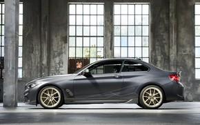 Picture BMW, profile, 2018, F87, M2, M2 M Performance Parts Concept