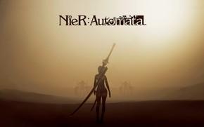 Picture desert, Nier Automata, A2