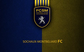 Picture wallpaper, sport, logo, football, Ligue 1, Sochaux-Montbeliard