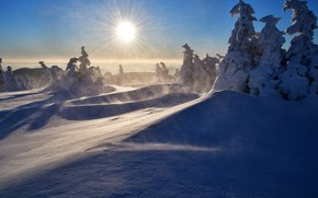Picture winter, the sun, rays, snow, trees, landscape, mountains, nature, morning, ate, Czech Republic, the snow, …