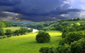 Picture Nature, Landscape, Storm, Trees