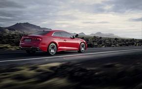 Picture Audi, speed, TDI, Coupe, Audi S5, 2020