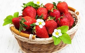 Picture table, strawberry, basket, ripe, Olena Rudo