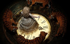 Picture lace, dial, spell, in a circle, tigers, the witch, art, in the dark, white flame, …