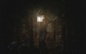 Picture forest, girl, light, darkness, lantern