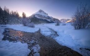 Picture Winter, landscape, Canadian Rockies, Banff national parks