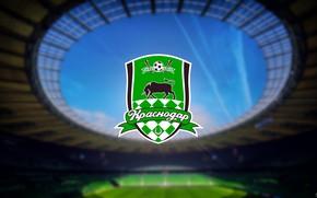 """Picture Logo, Logo, Russia, Logo, Stadium, Football club, Bulls, Krasnodar, madeinkipish, FC Krasnodar, Black-green, """"Krasnodar"""", FC, …"""