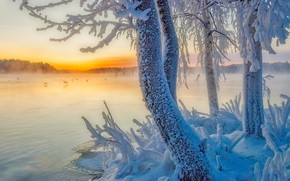 Picture winter, snow, trees, lake, Finland, Finland, Southern Savonia, South Savo