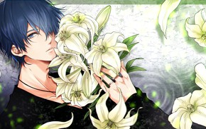 Picture flowers, Lily, guy, Vocaloid, Vocaloid, Kaito