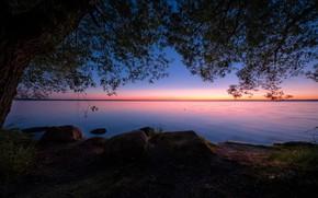 Picture landscape, night, nature, lake, stones, tree, shore, Andrei, Pleshcheyevo