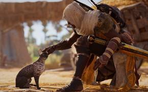 Picture game, Ubisoft, Assassin's Creed Origins, Assassin's Creed: Origins, Bayek