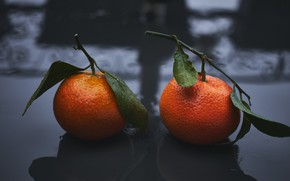 Picture drops, reflection, the dark background, two, pair, Duo, bokeh, tangerines