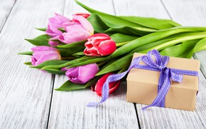 Picture flowers, gift, bouquet, colorful, tulips, pink, flowers, tulips, spring, purple, gift box