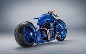 Picture Davidson, Harley, Harley Davidson, Custom, Harley Davidson Blue Edition Custom, Blue Edition