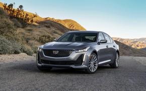 Picture road, grey, Cadillac, sedan, four-door, 2020, CT5
