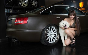 Picture auto, look, smile, Audi, dog, Girls, Asian, beautiful girl, posing on the car