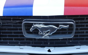 Picture mustang, ford, french, castellet