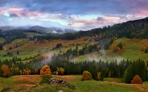 Picture autumn, forest, mountains, fog, hills, the slopes, Alps