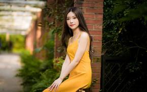 Picture girl, sweetheart, dress, Asian, bokeh