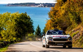 Picture asphalt, trees, rally, 2018, Abarth, 124 Rally
