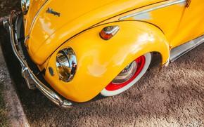 Picture Volkswagen, Beetle, Moises Alex