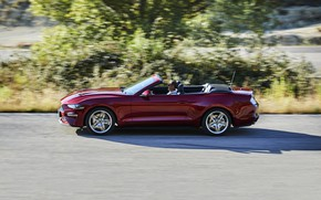 Picture movement, vegetation, Ford, convertible, 2018, dark red, Mustang Convertible