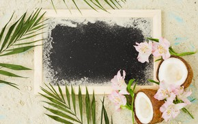 Picture sand, beach, summer, stay, coconut, frame, summer, beach, vacation, flowers, sand, coconut, vacation, flowrs, frame