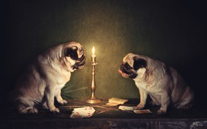 Picture dogs, card, candle holder, Pug, Natalia Ponikarova, английский клуб