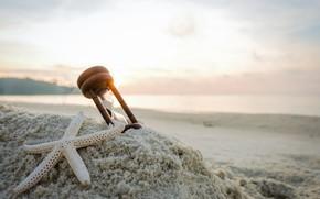 Picture sand, sea, beach, star, summer, beach, sea, hourglass, sea, sand, starfish