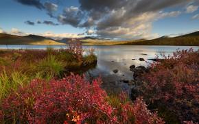 Wallpaper autumn, landscape, mountains, shore, foliage, red, pond, shrubs, autumn, the crimson
