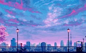 Picture the sky, sunset, bike, Sakura, guy, stop, by SeerLight
