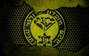 Picture wallpaper, sport, logo, football, Maccabi Netanya