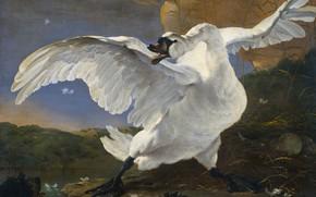 Picture bird, oil, picture, canvas, Yan Asselin, Swan is in Danger, Jan Asselijn, 1652