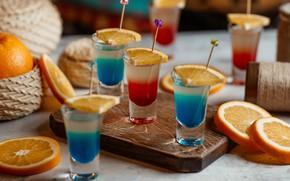 Picture orange, oranges, alcohol, citrus, glass, glasses, shots