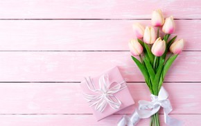 Picture background, pink, gift, bouquet, tulips