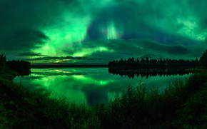Picture forest, the sky, grass, clouds, night, lake, reflection, shore, Northern lights, horizon, green, twilight, silhouettes, …