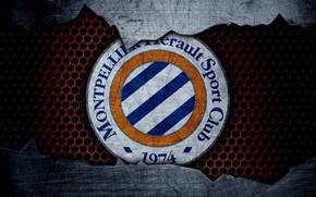 Picture wallpaper, sport, logo, football, Montpellier