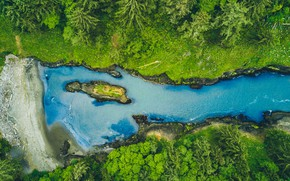 Picture Blue, Green, Water, River, Forest, Stones