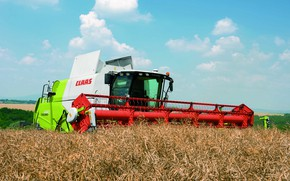 Picture grains, harvester, Claas, Tucano