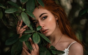 Picture look, leaves, girl, face, portrait, hands, red, redhead