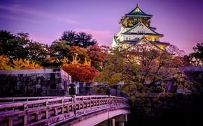 Picture trees, sunset, bridge, the city, castle, Japan, garden, Osaka