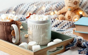 Picture books, scarf, sweets, decor, hot chocolate, marshmallows