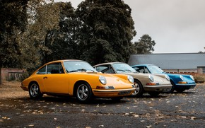 Picture autumn, leaves, trees, 1969, porsche, carrera, porsche 911