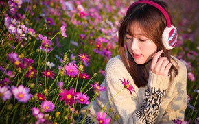 Picture girl, flowers, background, petals