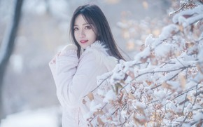 Picture Snow, Branches, Asian, jacket