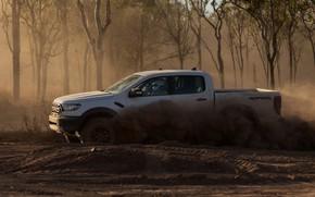 Picture white, trees, Ford, dust, Raptor, pickup, 2018, Ranger