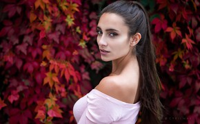 Picture look, leaves, background, model, portrait, makeup, hairstyle, brown hair, beauty, is, in pink, posing, bokeh, ...