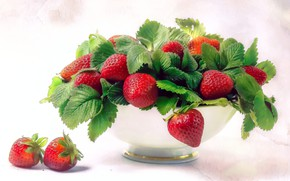 Picture leaves, berries, treatment, strawberry, red, bowl, still life, light background, composition