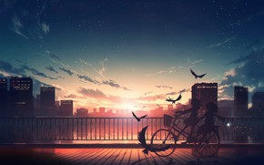 Picture water, sunset, birds, bike, the city, girls