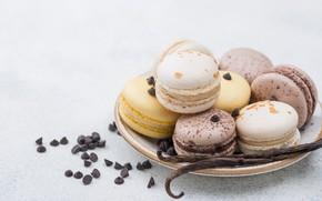 Picture cookies, cake, vanilla, macaron, Iryna Melnyk